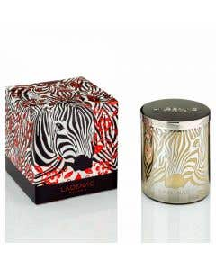 Africa Camouflage Candle