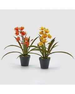 Artificial Orchid Bold Set/2