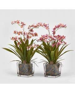 Artificial Orchid Pink – Set/2