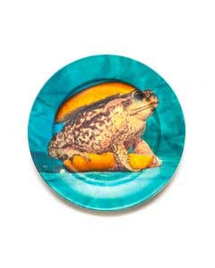 Porcelain Plate Toad
