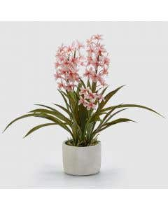 Artificial Orchid Pink H53