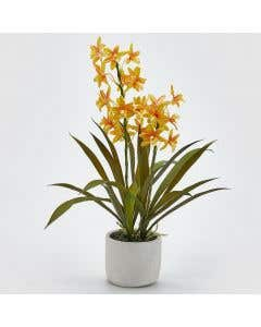 Artificial Orchid Yellow H50cm